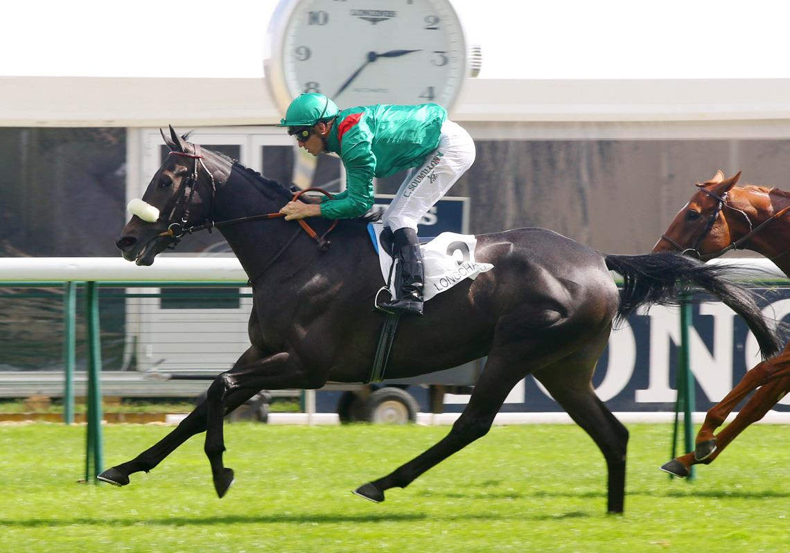 German Classic hope for Sea The Stars